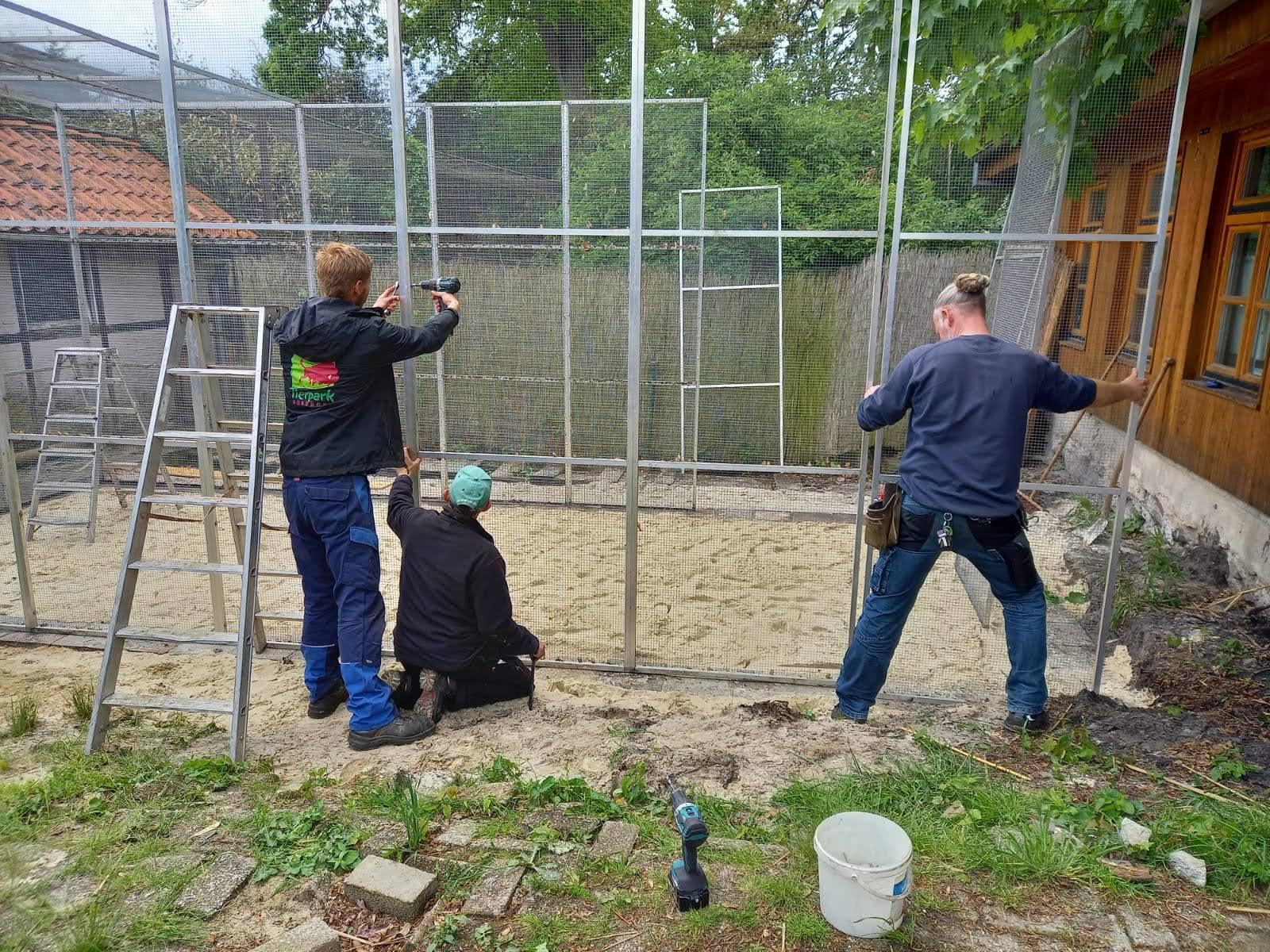 Aufbau der Vogelvoliere (Foto: Dr. Heike Weber)